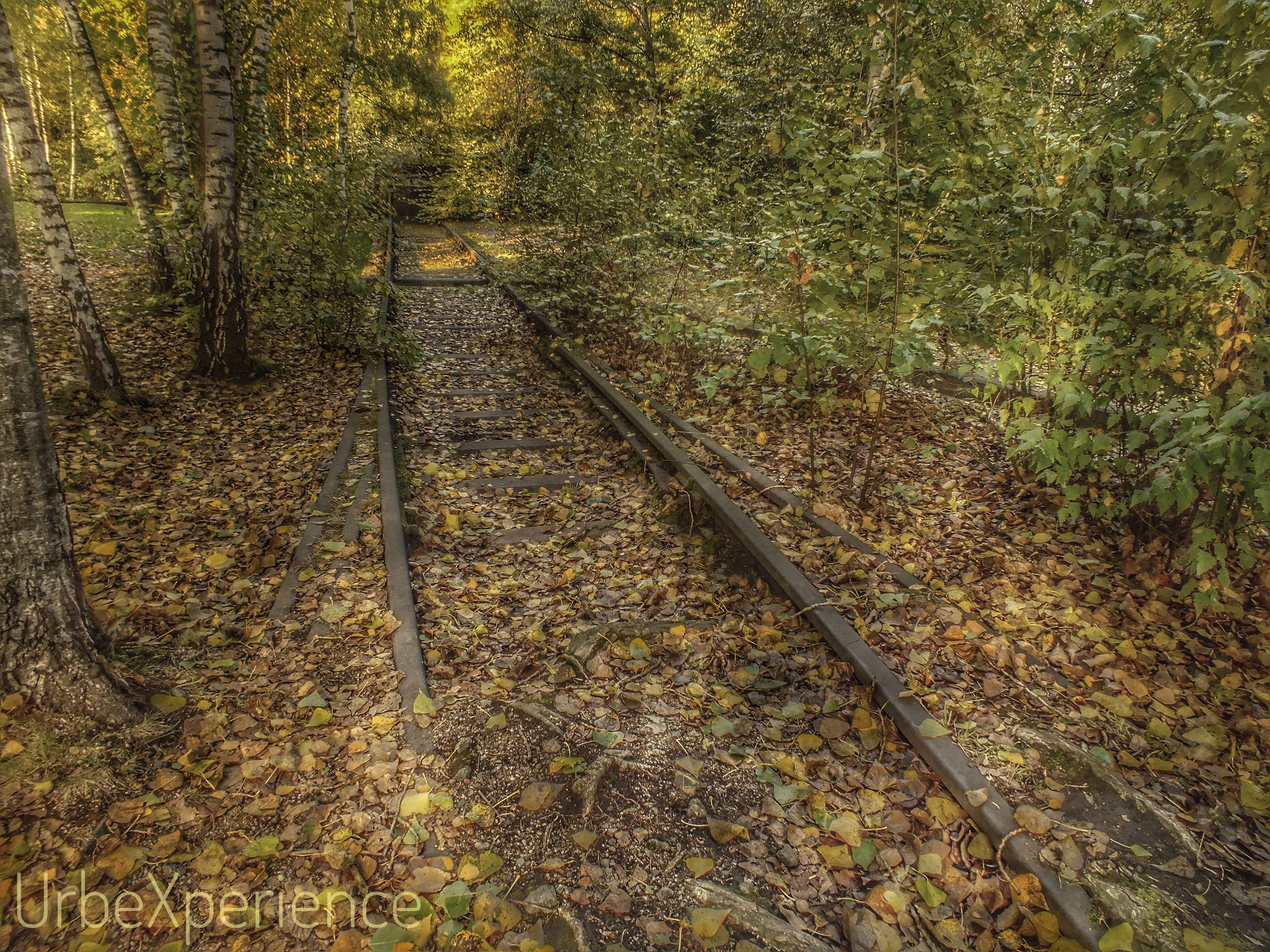 Lost trains & tracks